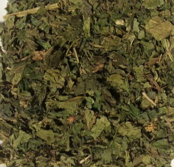 Brennessel Blätter, geschnitten, Teehaus Taucha